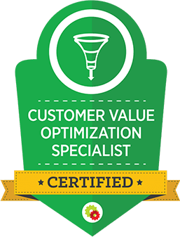 customer-value-optimization